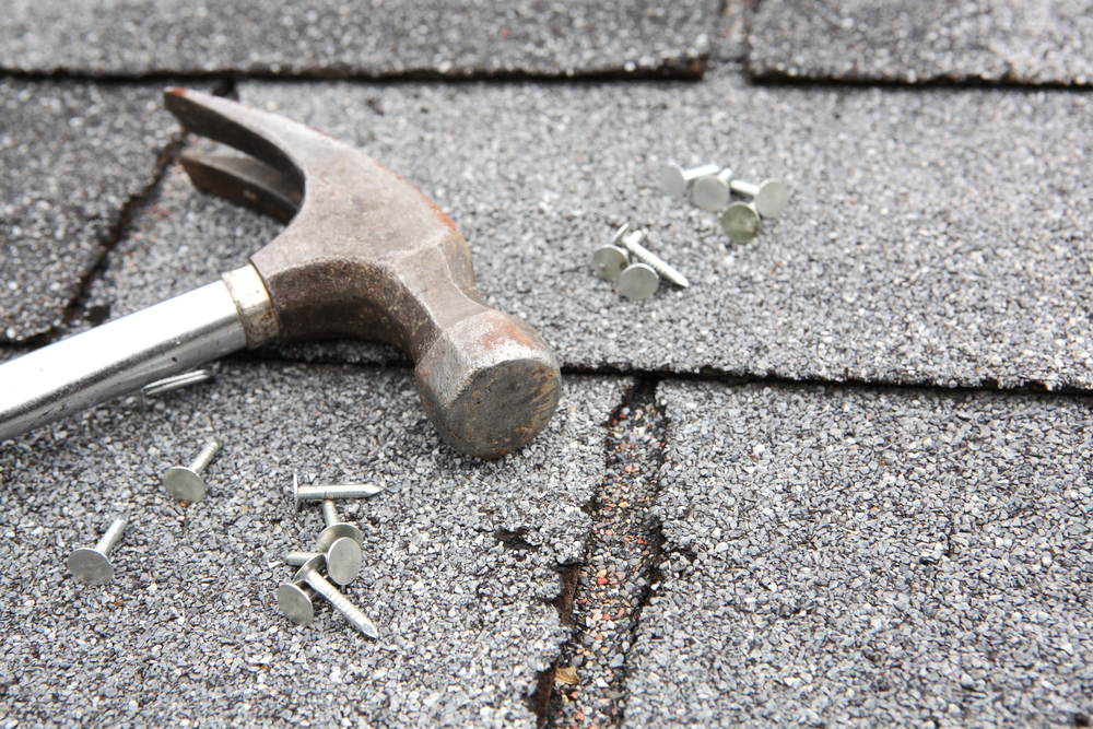 Roof Repair Services in Edgewood & Albuquerque, NM